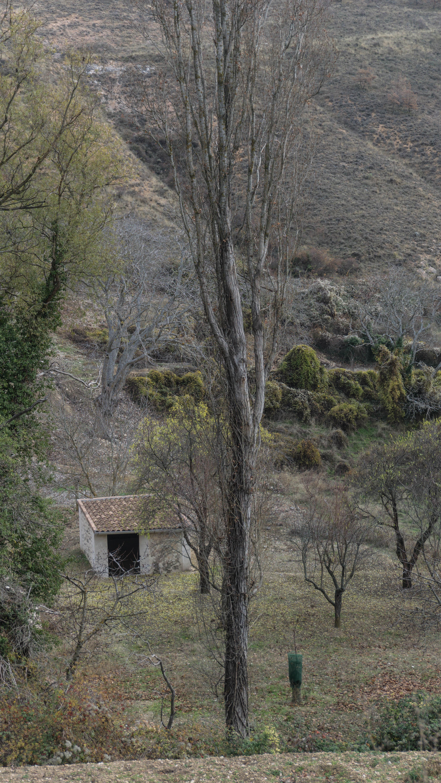 Onkalo